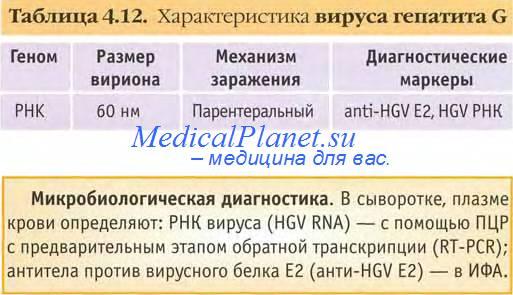 гепатит G у детей