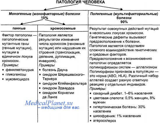Варианты наследственной патологии у человека