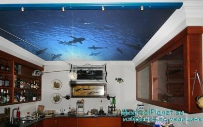 потолки навесные фото на кухню