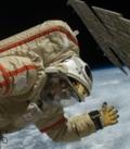 кровоток у космонавтов