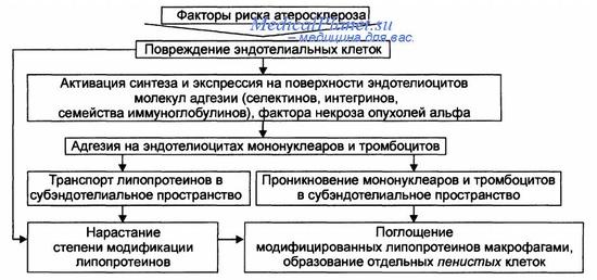 Атеросклероз нижних и верхних конечностей