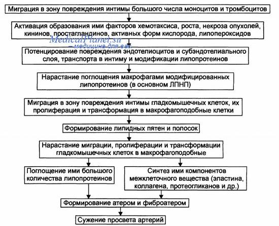 Снижение холестерина в крови статины
