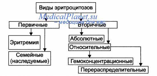 Виды эритроцитозов