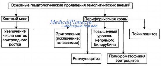 Клиника гемолитических анемий