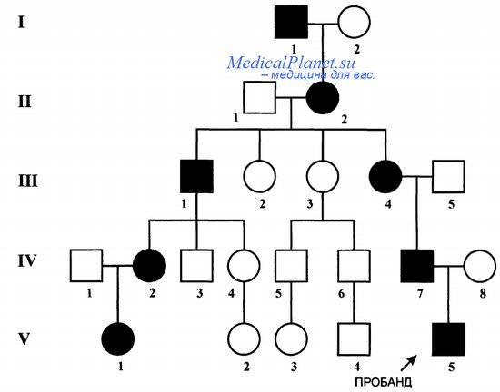 Аутосомно-доминантный тип наследования - генеалогическое дерево