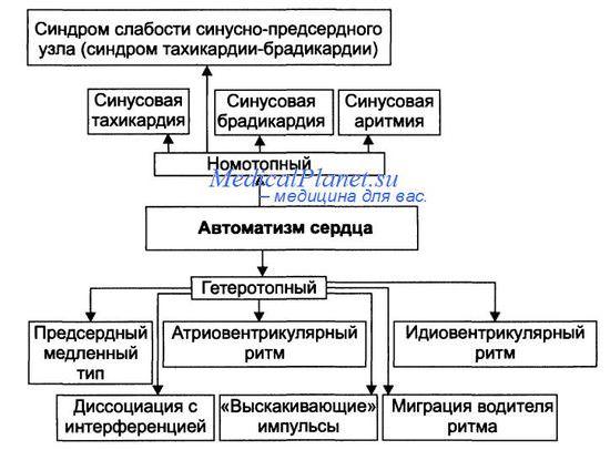 Виды номотопных и гетеротопных аритмий
