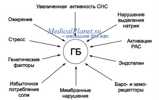 stress-kak-faktor-riska-gipertonicheskoy-bolezni