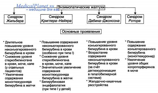 Дифференциальная диагностика вирусного гепатита b