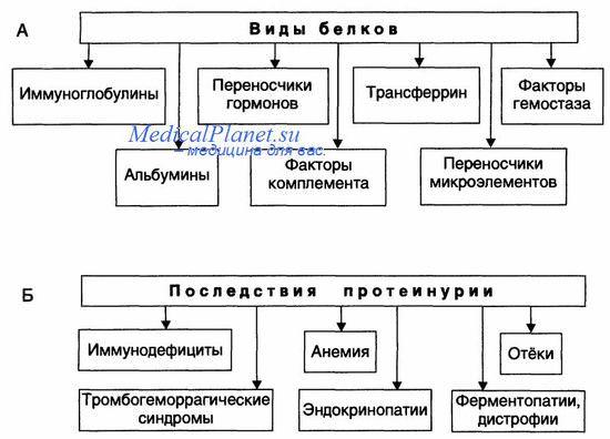 Основные звенья патогенеза и