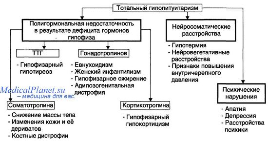 болезнь симондса - тотальный гипопитуитаризм