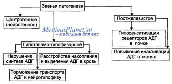 Несахарный диабет. Причины и признаки несахарного диабета.
