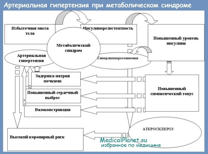 Отзывы лечение гипертонии пиявками отзывы