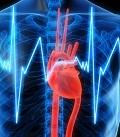 болезни сердца и перикарда