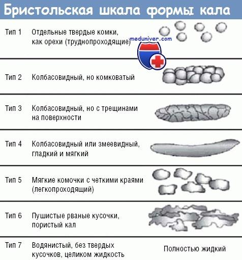 Классификация формы кала (Бристольская)