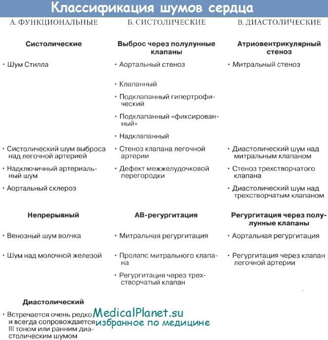Классификация шумов сердца