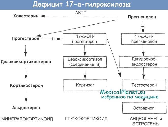 Дефицит 17а-гидроксилазы