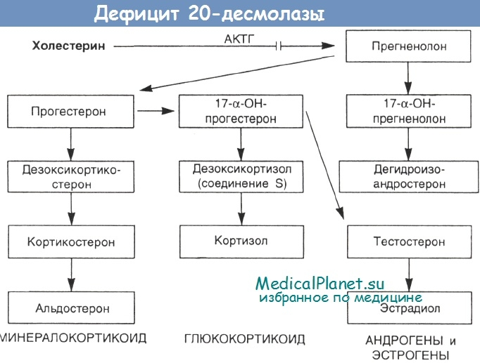 дефицит 20-десмолазы