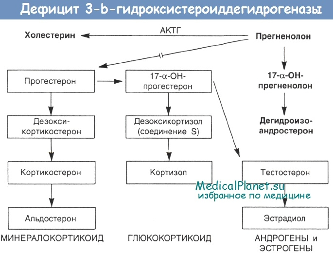 дефицит 3-b-гидроксистероиддегидрогеназы