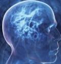 неврология и гормоны
