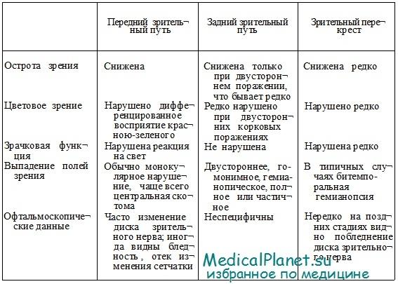 Нейроанатомия зрительного пути. Признаки поражения
