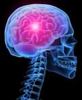 видео по неврологии