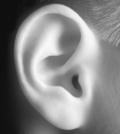врожденные пороки развития уха