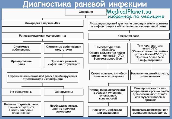 Схема диагностики раневой инфекции
