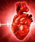 сердечно-сосудистые заболевания на фоне труда